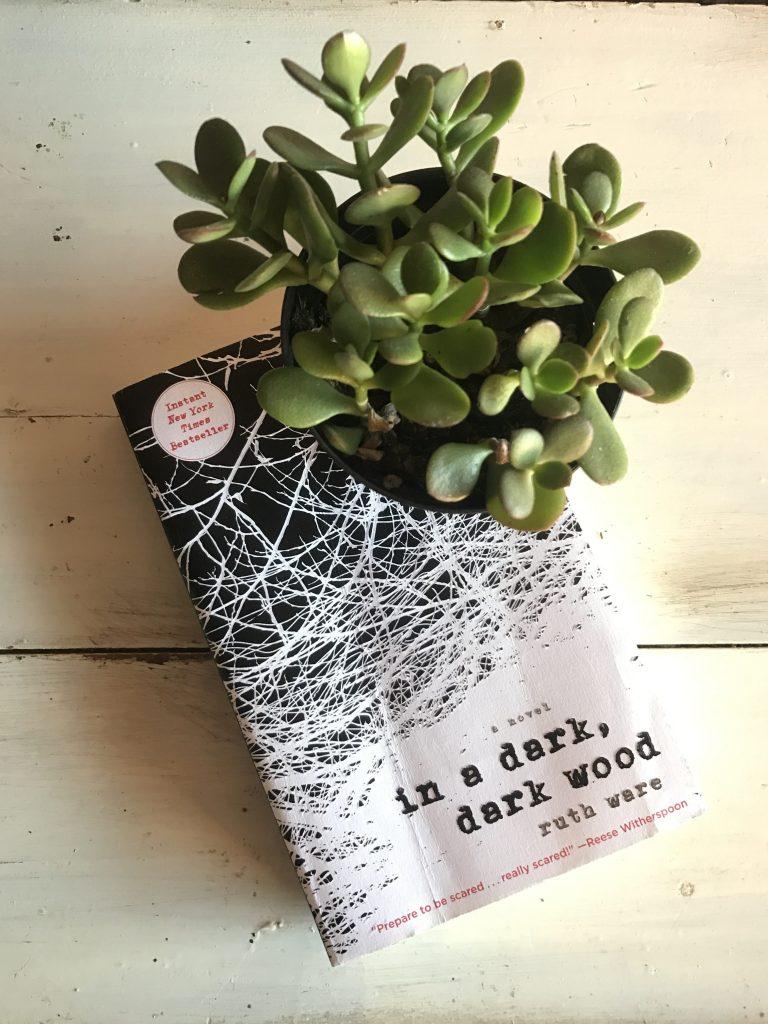 September 2017 Reading List - In a Dark Dark Wood by Ruth Ware