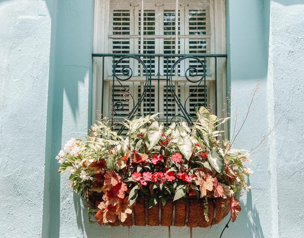 Snapshots from Charleston